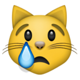 crying-cat-face